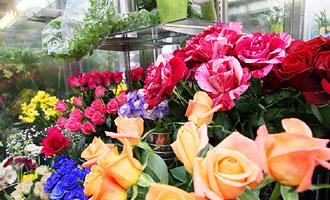 新鮮な生花をお届けします