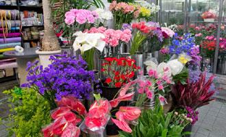新鮮な花がズラリと並びます