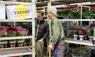 生花市場の担当者に話を聞いて状態を確認します