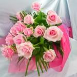 rose-p