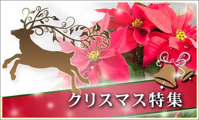 main-tokushu-christmas