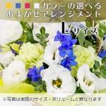 omakase-arrangement-8000